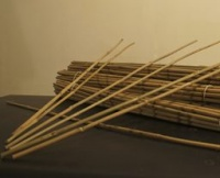 Bamboo Support Canes